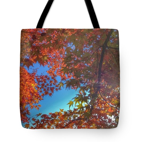 A Little Bit Of Sunshine On A Fall Tote Bag by Blenda Studio