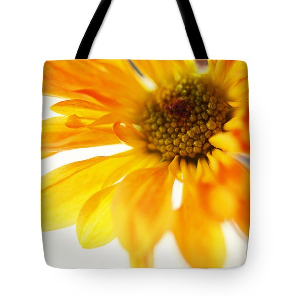 A Little Bit Sun In The Cold Time Tote Bag