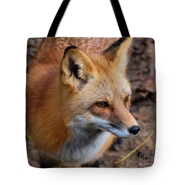 A Little Red Fox Tote Bag