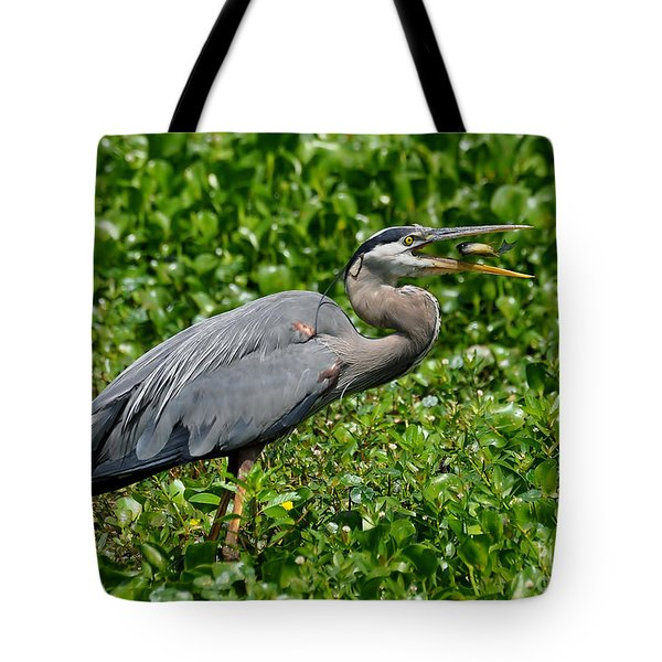 Tote Bag featuring the photograph A Little Snack by Kathy Baccari