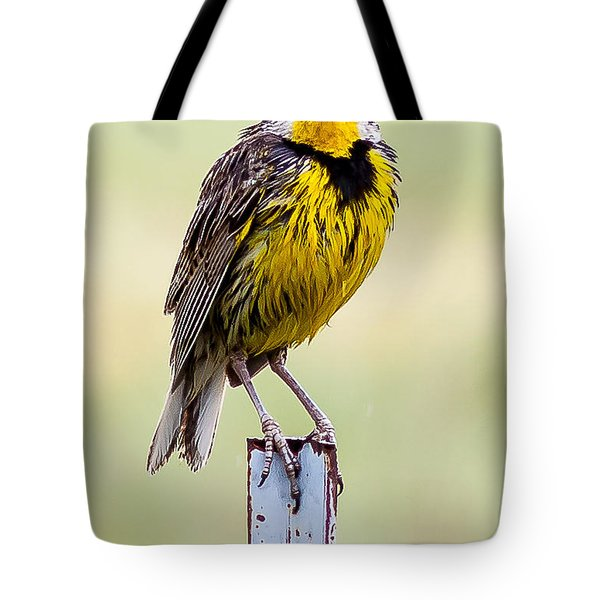 A Little Wet Tote Bag