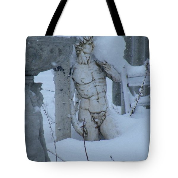 Tote Bag featuring the photograph A Load Of Snow by Brian Boyle