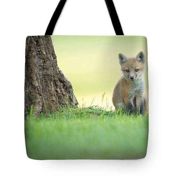 A Lone Kit Tote Bag by Everet Regal