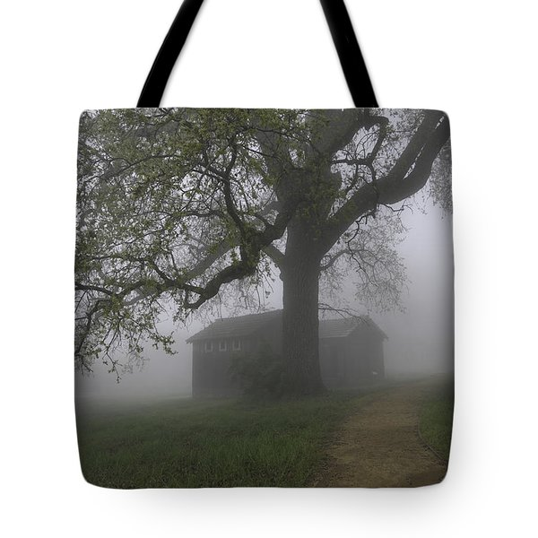 A Look Back In Time Tote Bag by Lynn Bauer