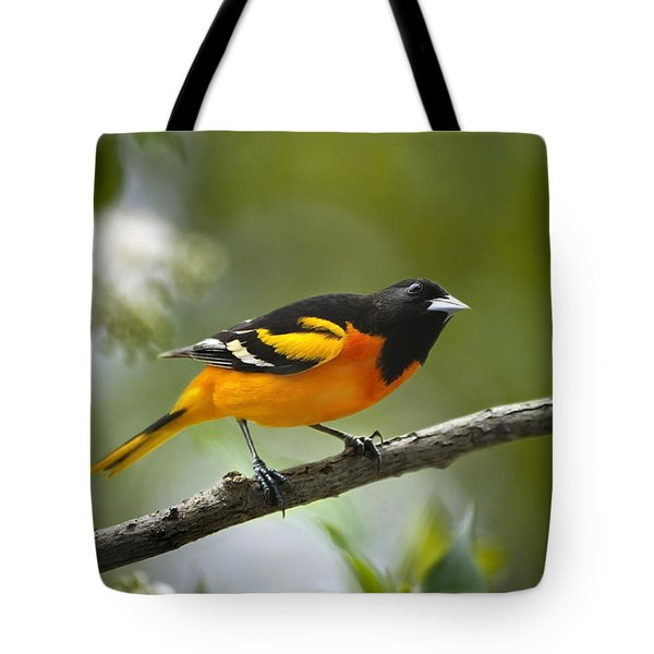 A Look To Remember Tote Bag by Christina Rollo