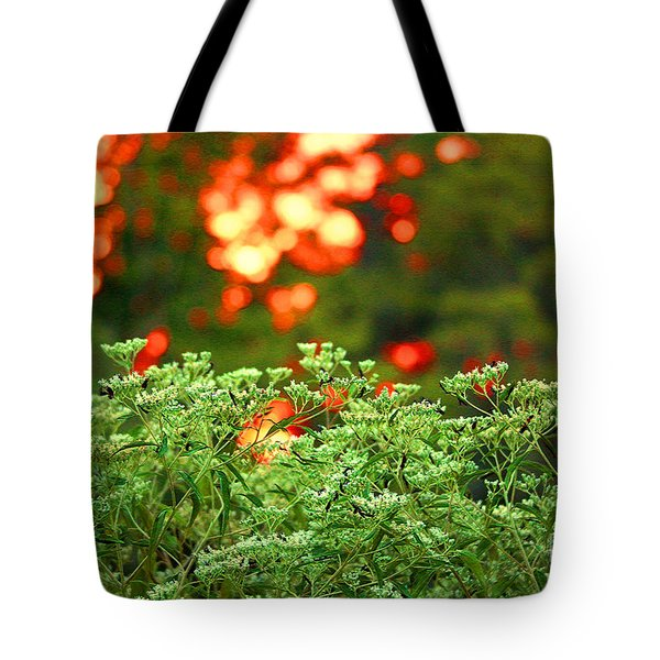 A Love Bug Sunset Tote Bag