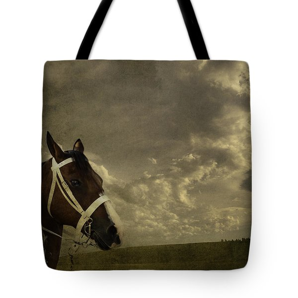 A Lovely Horse Tote Bag
