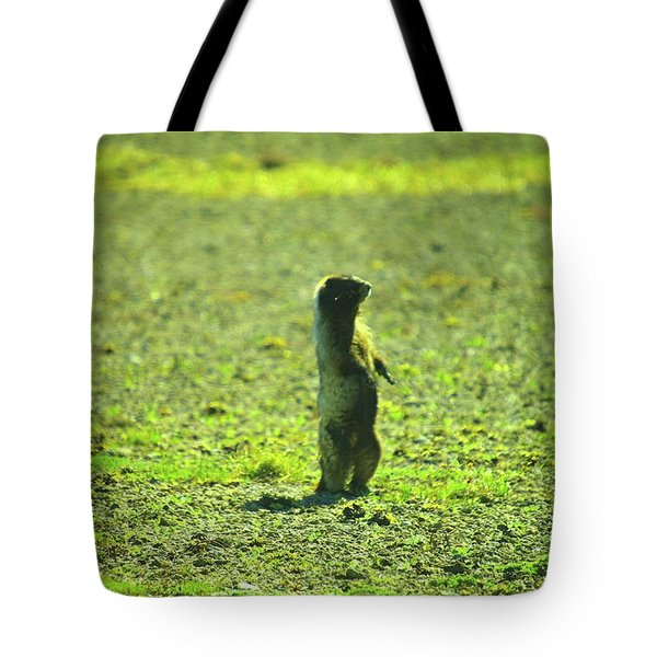A Marmon Checking Things Out  Tote Bag