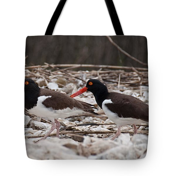 A Mated Pair Of Oyster Catchers Tote Bag