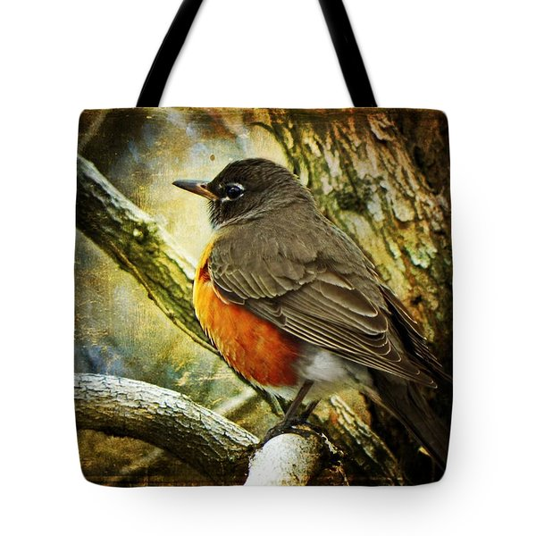 A Moment For Mother Robin Tote Bag