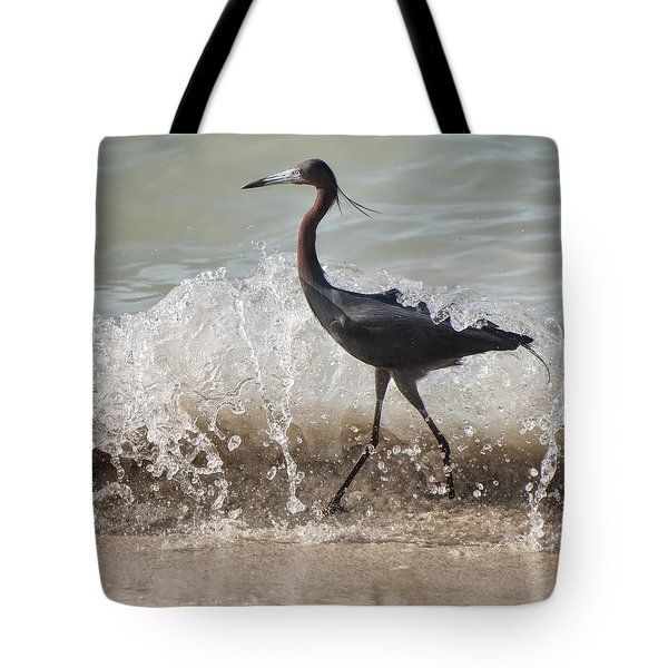 A Morning Stroll Interrupted Tote Bag