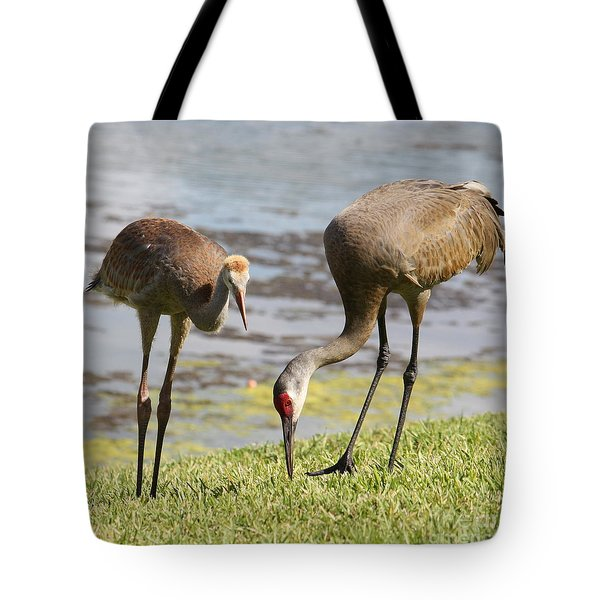 A Mother's Lesson Tote Bag by Carol Groenen