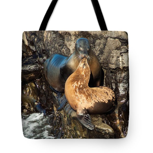 A Mothers Love  Tote Bag by Darleen Stry