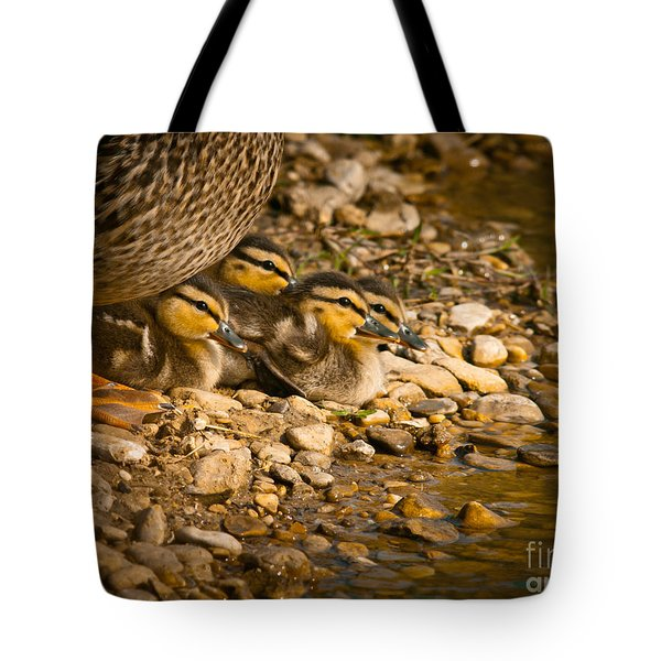 A Mother's Love Tote Bag by Robert Frederick