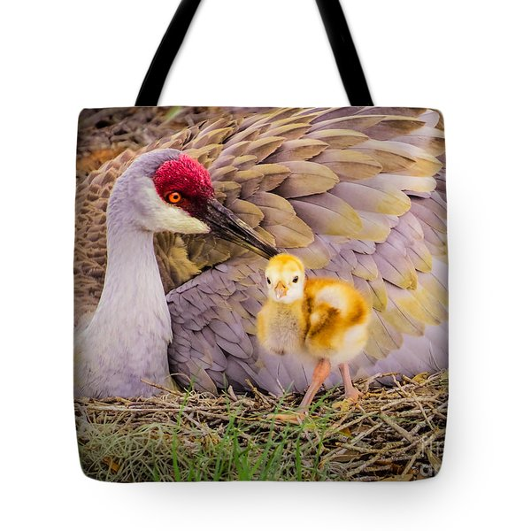 A Mother's Lovely Touch Tote Bag by Zina Stromberg