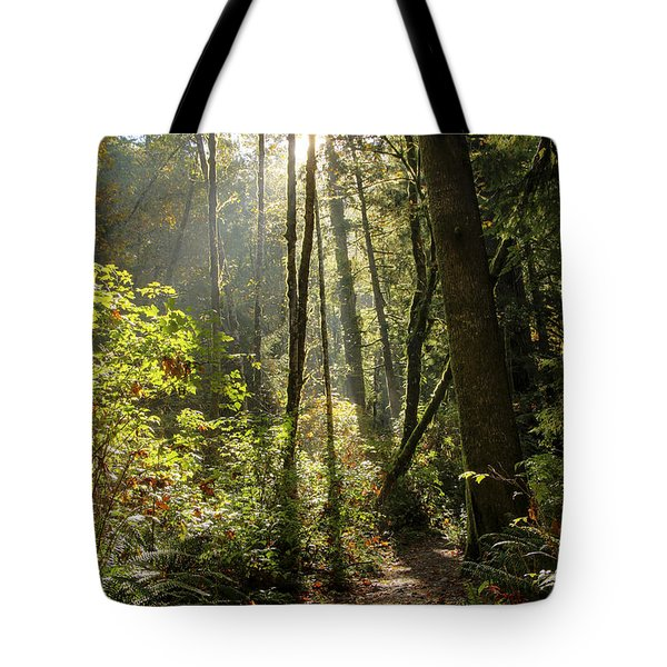 A Narrow Trail Tote Bag by Darleen Stry