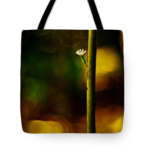 A New Beginning Tote Bag by Darryl Dalton