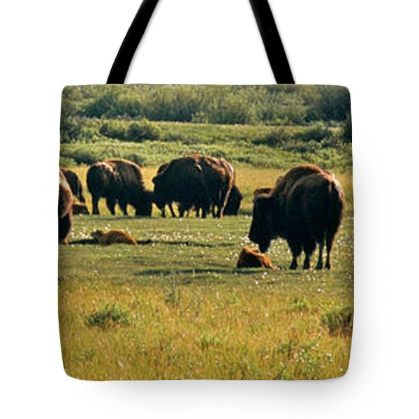 A New Beginning Grand Teton National Park Tote Bag by Ed  Riche