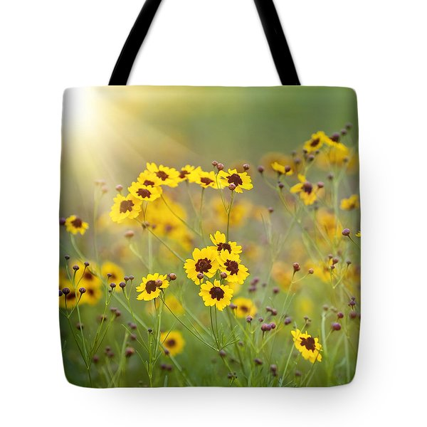 A New Day Tote Bag by Scott Pellegrin
