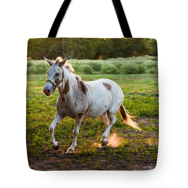 A Noble Steed Tote Bag