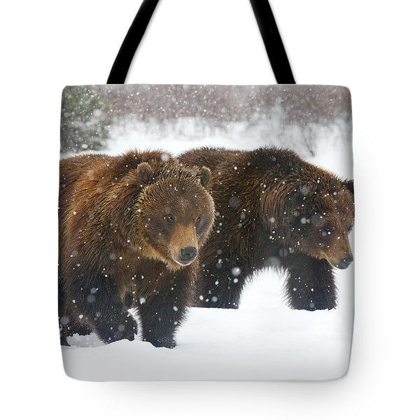 A Pair Of Adult Brown Bears Walk Tote Bag