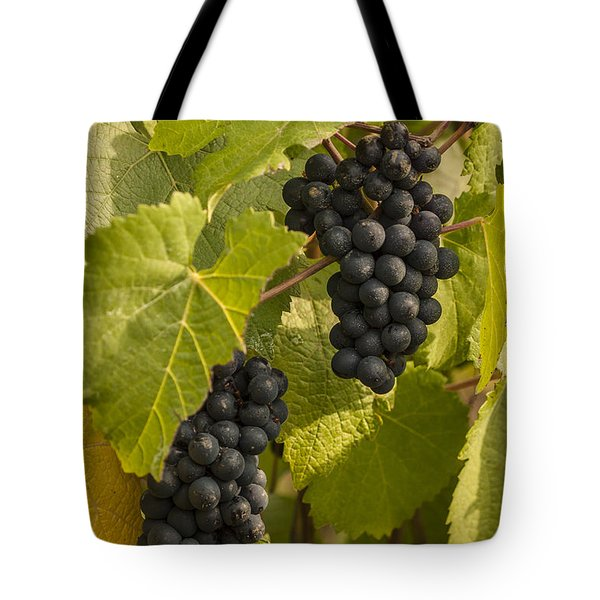 A Pair Of Clusters Tote Bag by Jean Noren