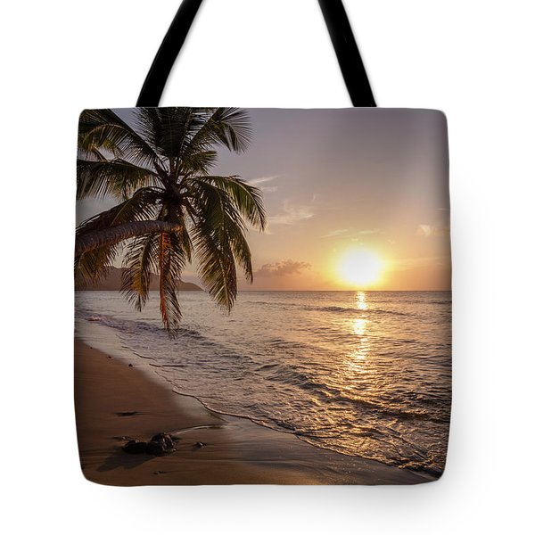 A Palm Tree Silhouette At Sunset  St Tote Bag