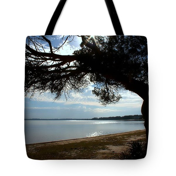 A Park With Tranquil Moments Tote Bag by Debra Forand