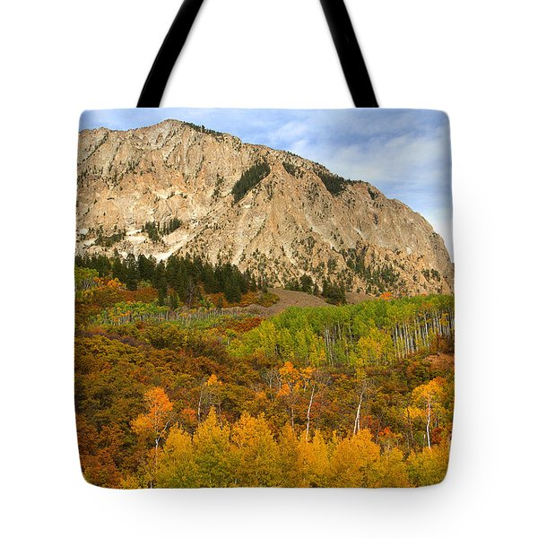 Tote Bag featuring the photograph A Patchwork Quilt by Jim Garrison