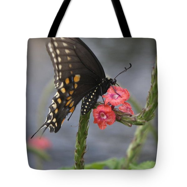 Tote Bag featuring the photograph A Pause In Flight by Judith Morris