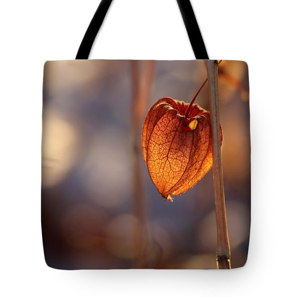 Tote Bag featuring the photograph A Peek Inside by Kenny Glotfelty