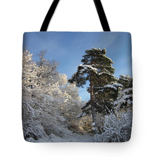 A Perfect Winterday Tote Bag