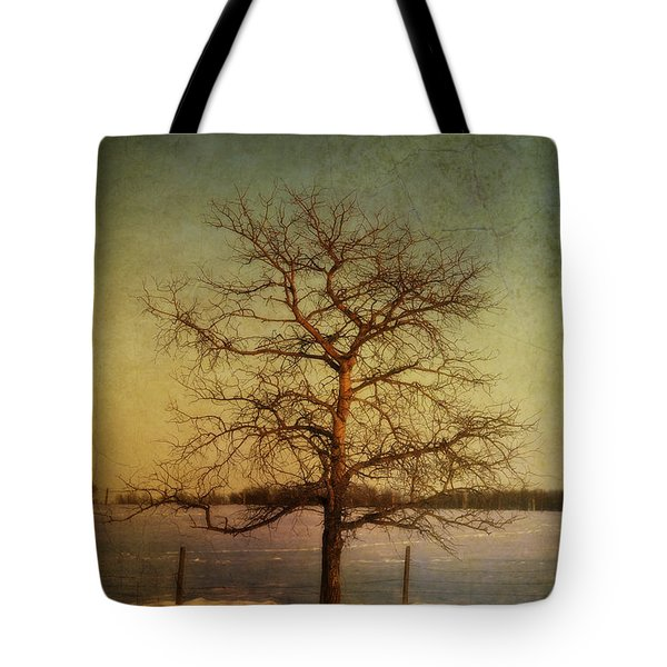 A Pictorialist Photograph Of A Lone Tote Bag by Roberta Murray