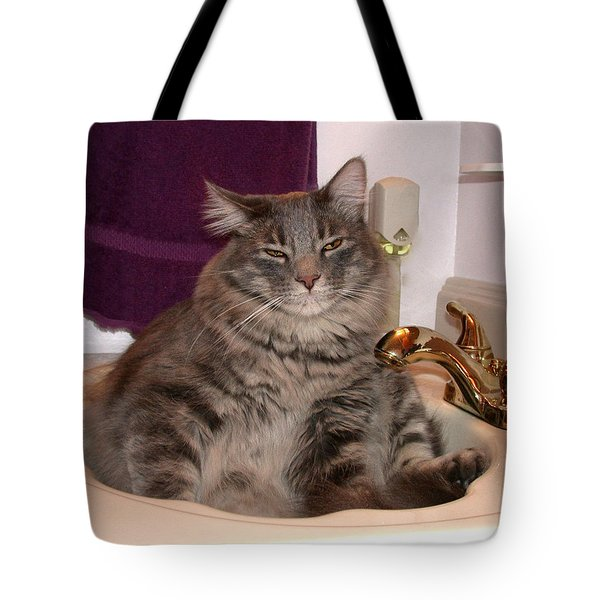 A Place To Relax Tote Bag