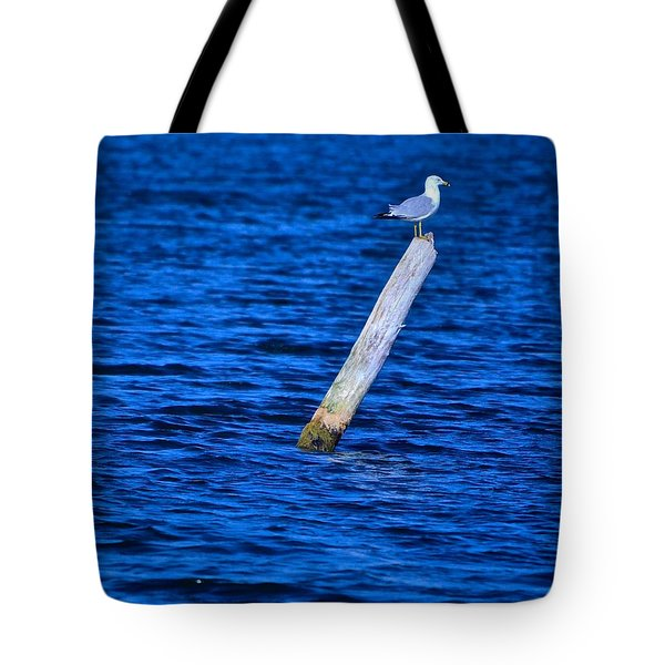 A Place To Rest Tote Bag by Rita Mueller