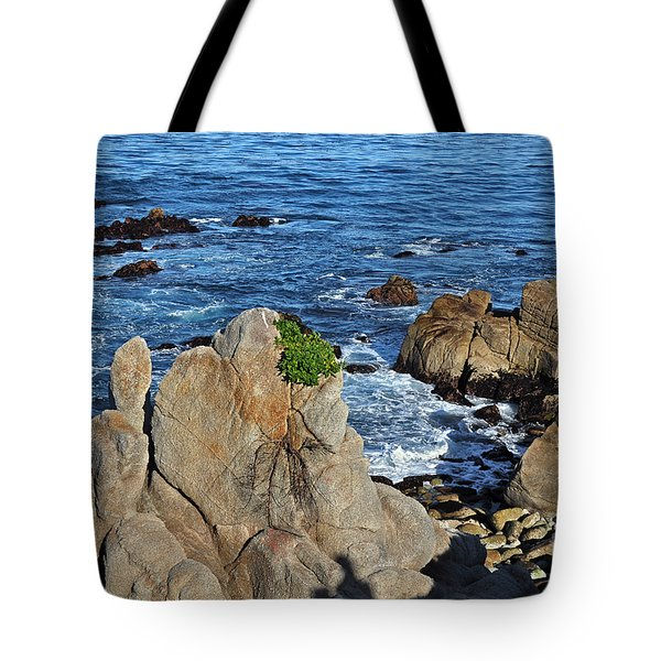 A Plant Grows On Ancient Seaside Rocks Tote Bag by Susan Wiedmann