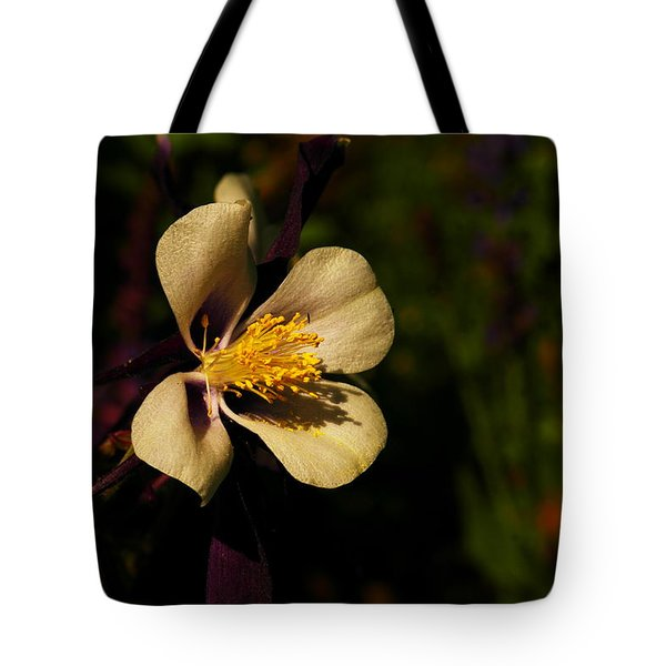 A Pretty Flower In The Sun Tote Bag by Jeff Swan