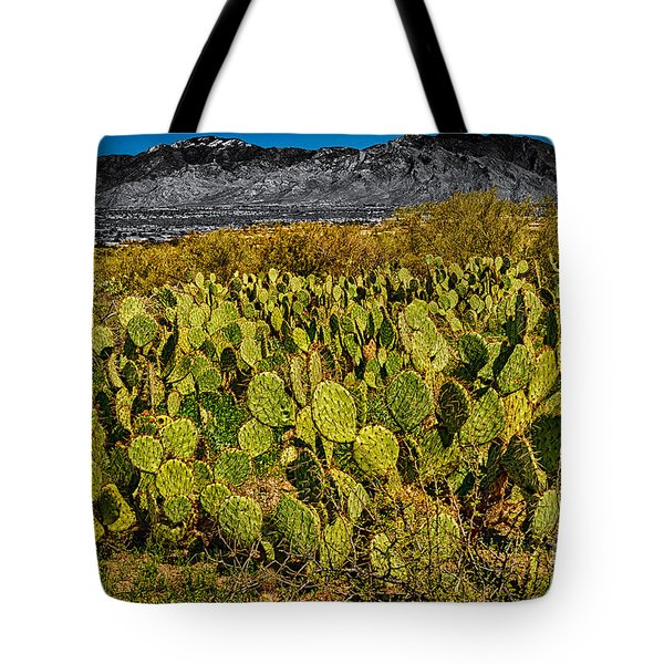 Tote Bag featuring the photograph A Prickly Pear View by Mark Myhaver