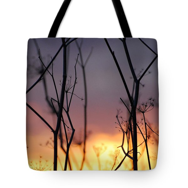 A Queen's Sunset Tote Bag by Jani Freimann