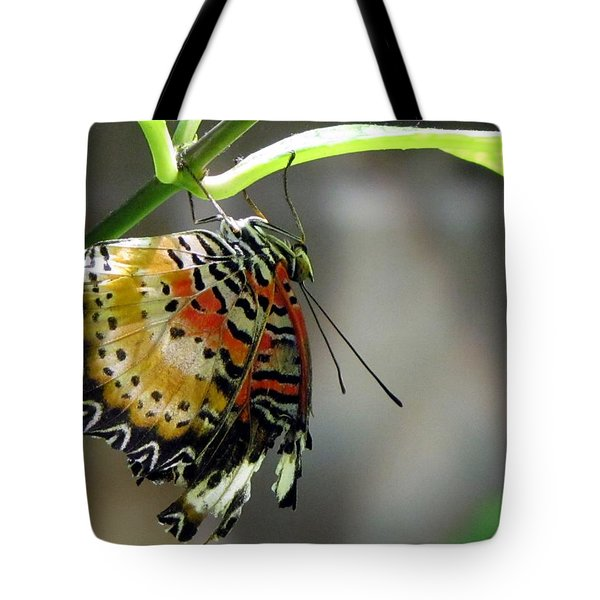 A Real Beauty Tote Bag