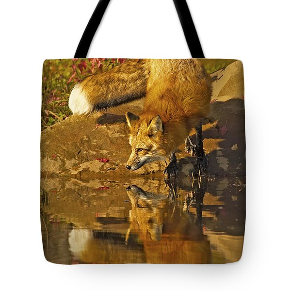 A Real Fox Tote Bag