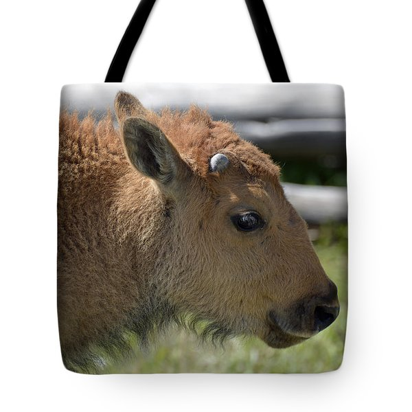 A Red Dog In Yellowstone Tote Bag by Bruce Gourley