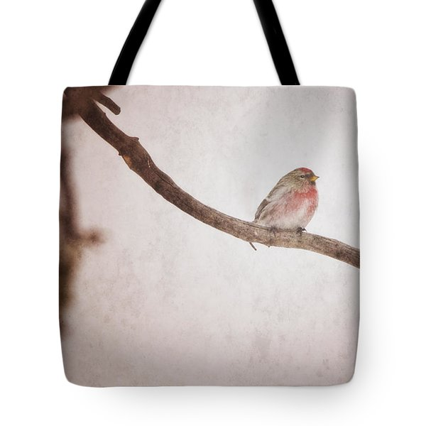 A Redpoll Bird On The Branch Of A Pine Tote Bag by Roberta Murray