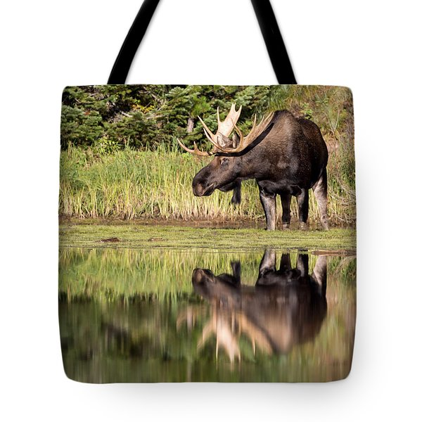 A Reflective Mood Tote Bag by Jack Bell