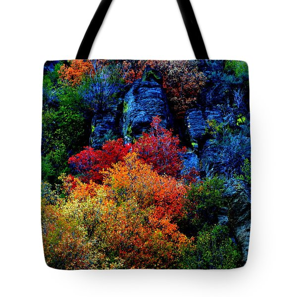 Tote Bag featuring the photograph A Riot Of Color by Dorrene BrownButterfield