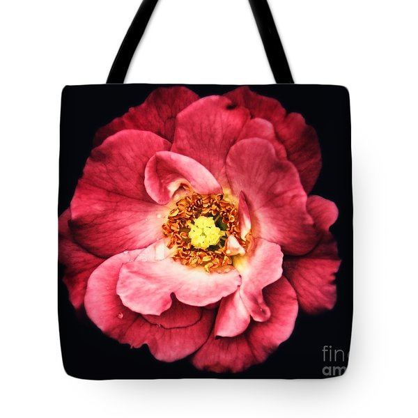 A Rose From The Shadows Tote Bag
