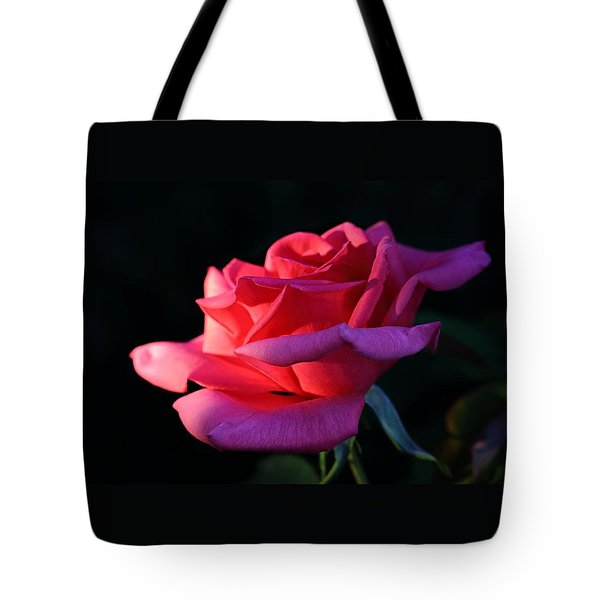 Tote Bag featuring the photograph A Rose Is A Rose by David Andersen