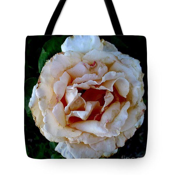A Rose Is A Rose Tote Bag by Fred Wilson