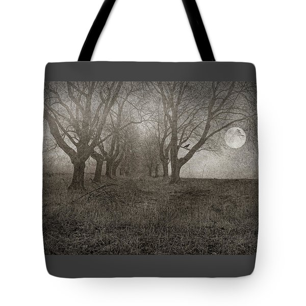 A Scene From Annandale Tote Bag