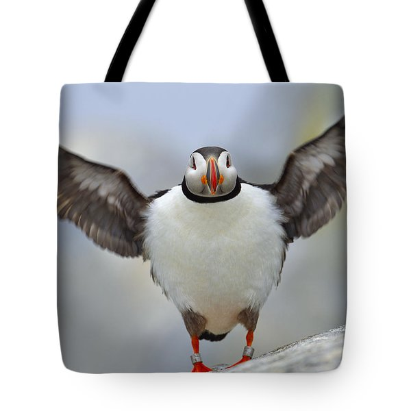 A Seaside Breeze Tote Bag by Tony Beck